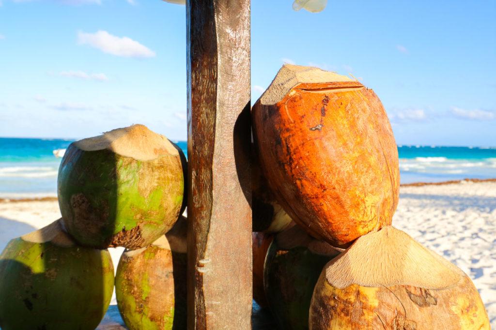Beaches and Restaurants in Tulum-1