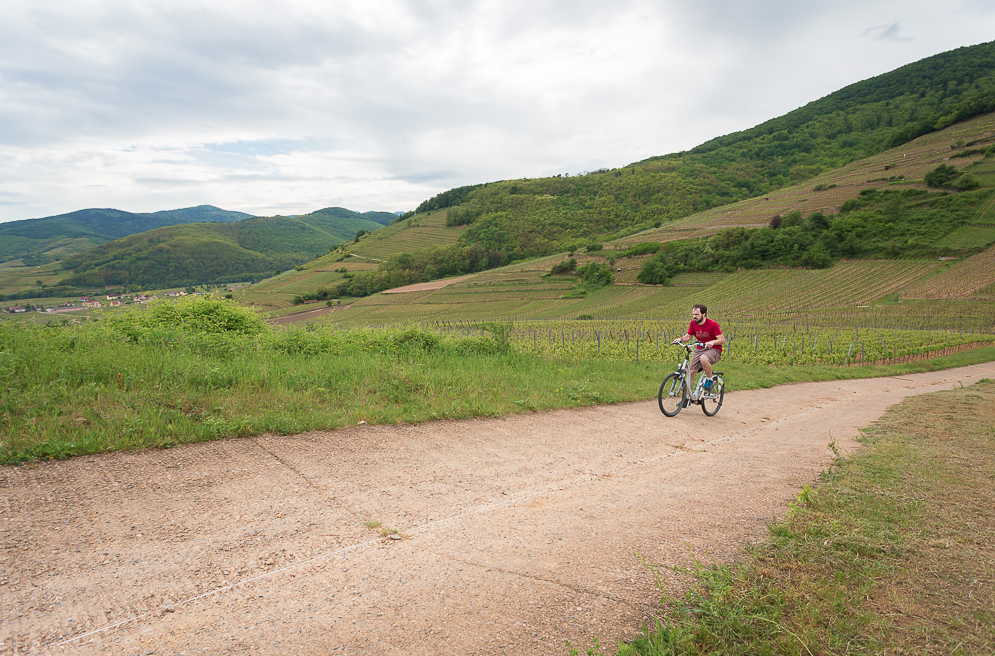 Alsace by Bike