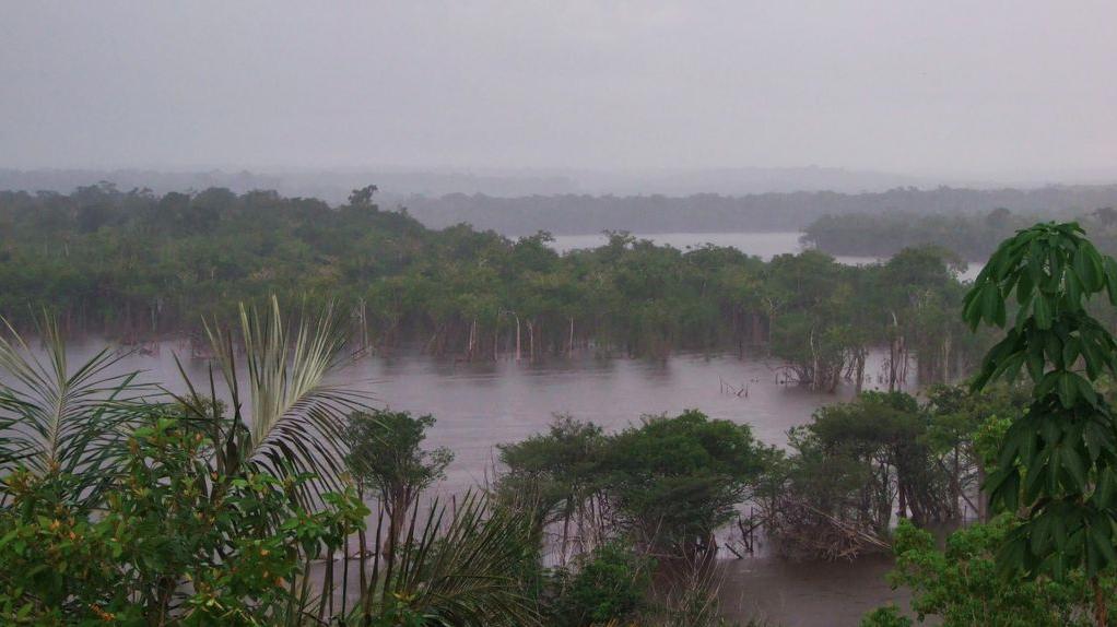 Amazonas rain
