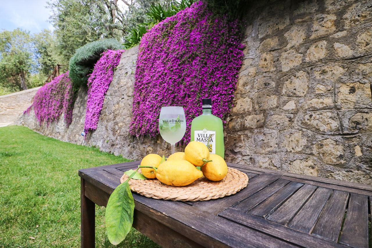 Limoncello – visit a lemon grove