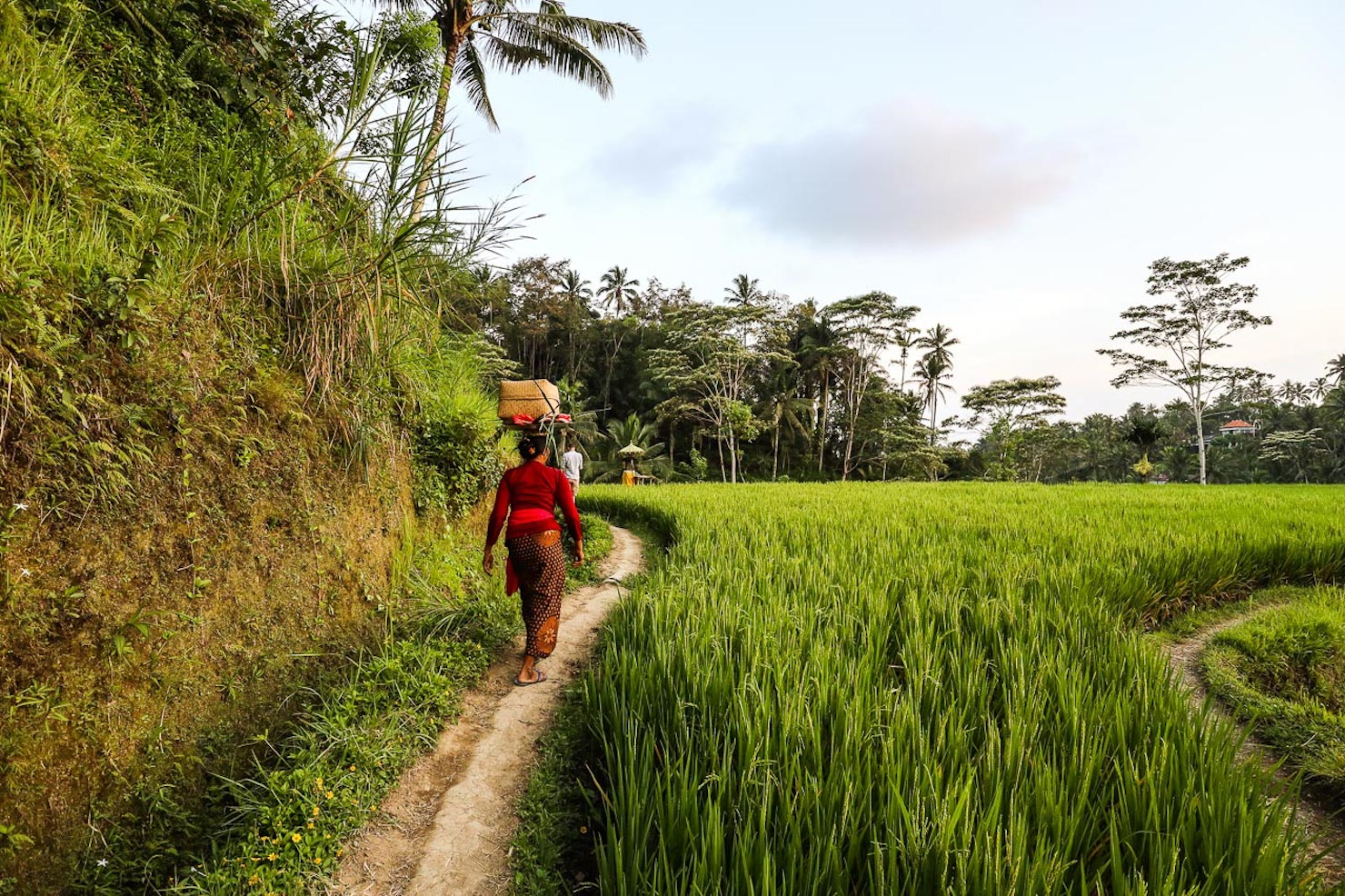 Two weeks in Bali: itinerary